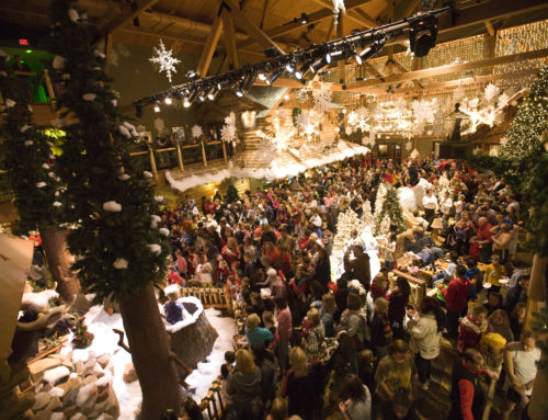 5 Reasons Why You Need to Stay at the Great Wolf Lodge for the Howlidays